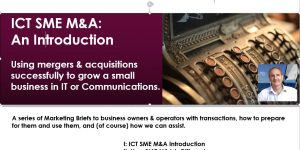 Using M&A to Grow an ICT SME (ICTSC'17)